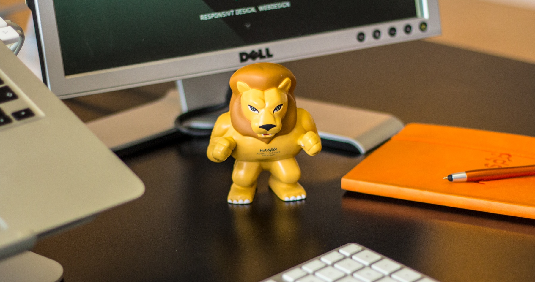 Lion-1800x950px-RGB-01